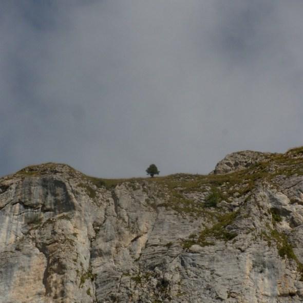 Entre ciel et rocher (Fochsen)