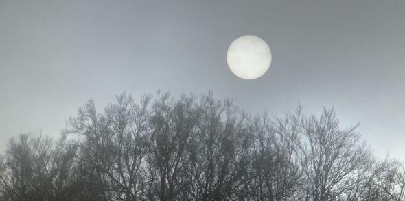 Le soleil blanc à Ledeu